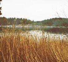 Let the waters float us down by GSwindlehurst