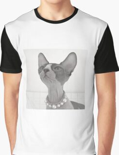 Bicolor sphynx cat, black and white Graphic T-Shirt
