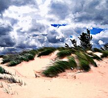 Sandy Beach Dune Grass by perkinsdesigns