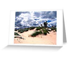 Sandy Beach Dune Grass Greeting Card