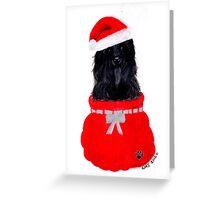 Tibetan Terrier for Christmas in Black Greeting Card