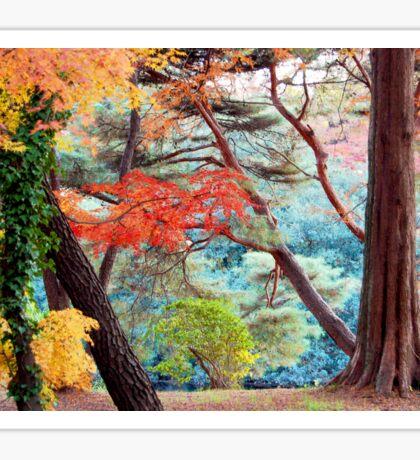 Autumn Colours 4 Sticker