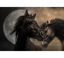 The Horse as Horse-Ess Photographic Print
