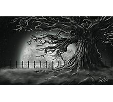 Tree Of lost Souls Photographic Print