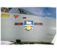 Falklands Crest on 23 Sqn Phantom Poster