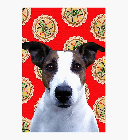 Doggy Biscuits Photographic Print