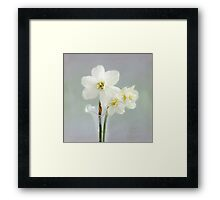 The Poet's Daffodils Framed Print