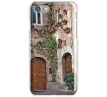 Hanging Gardens iPhone Case/Skin