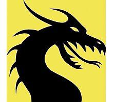 Dark Dragon Photographic Print