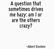 A question that sometimes drives me hazy: am I or are the others crazy? by Quotr