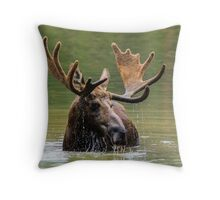 Wild Moose in Colorado Throw Pillow