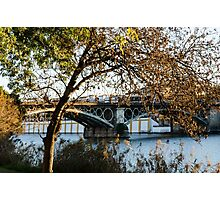 Seville - the Triana bridge Photographic Print