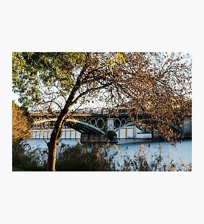 Seville - the Triana bridge Photographic Print
