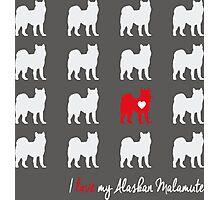 I love my Alaskan Malamute - breed dog Photographic Print