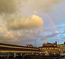 Rainbow Over Sandusky 2 by Shawna Rowe