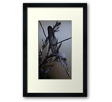 First dead bird skull burning with a black flame feather Framed Print
