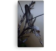 First dead bird skull burning with a black flame feather Canvas Print
