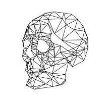 Wire Skull Photographic Print