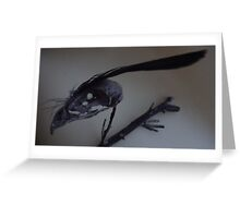Last dead bird skull burning with a black flame feather Greeting Card