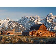 Bison at barn Photographic Print