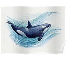 Orca Splash ~ Watercolor ~ Killer Whale Poster