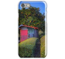 Winter Oranges iPhone Case/Skin