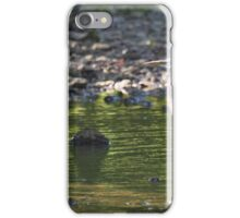 A Blue Heron in the White River iPhone Case/Skin