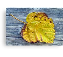 Hint of the coming Fall Canvas Print