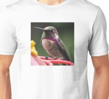 BEAUTIFUL ANNA'S HUMMINGBIRD ON PERCH Unisex T-Shirt
