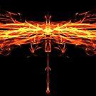 The Phoenix by AsteriskZero