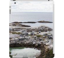Polly's Cove iPad Case/Skin