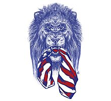 Lion Protects America Photographic Print