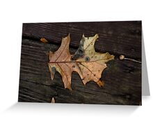 Wet Oak Greeting Card