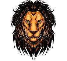 Lion Artwork Photographic Print