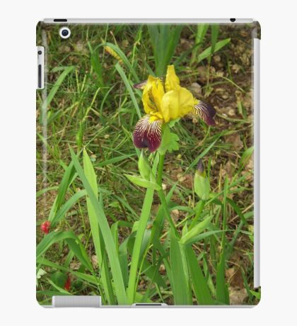 Yellow And Purple Flower                    Pentax X-5 Series 16 MP iPad Case/Skin