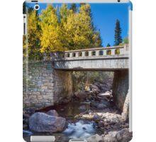 Bridge Over Autumn Waters iPad Case/Skin