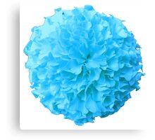 BLUE MARIGOLD Canvas Print
