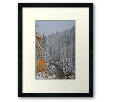 Winter in September #5 Framed Print