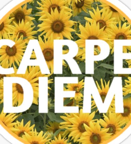 Sunflower Carpe Diem Sticker