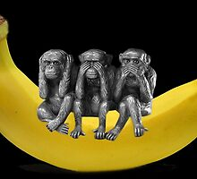 ❤‿❤ MONKEYS SIGN LANGUAGE SITTING ON BANANA❤‿❤ by ╰⊰✿ℒᵒᶹᵉ Bonita✿⊱╮ Lalonde✿⊱╮