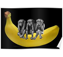 ❤‿❤ MONKEYS SIGN LANGUAGE SITTING ON BANANA❤‿❤ Poster
