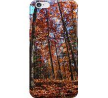 Smoky Mountains Scene-0078332 iPhone Case/Skin