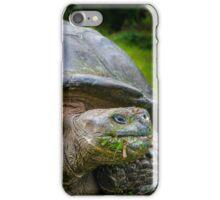 Galapagos Tortoise iPhone Case/Skin