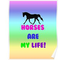 Colorful Horses Are My Life  Poster