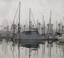 Fog in the marina by Celeste Mookherjee