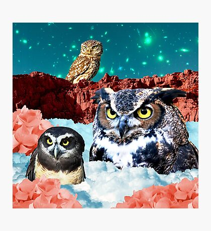 Kindly Owl Gods of the Red Mesa Photographic Print