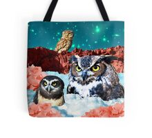 Kindly Owl Gods of the Red Mesa Tote Bag
