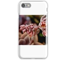 Up Close Flowers iPhone Case/Skin
