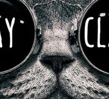Stay Classy Cat Sunglasses Sticker