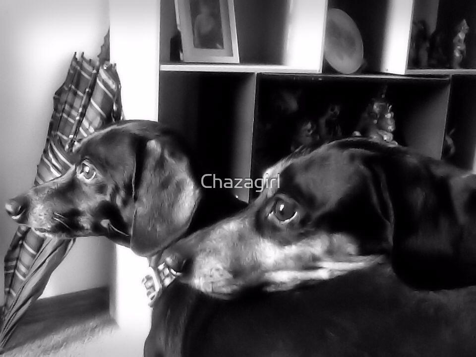 My Boys by Chazagirl
